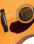 Fender PM-1 Standard Dreadnought, Ovangkol Fingerboard, Includes Deluxe Hardshell Case, Natural