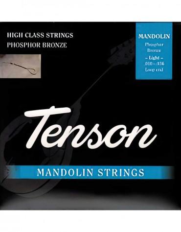 Gewa F600.455 Mandolin Wire Set Tenson Phosphor Bronze 010 - 034